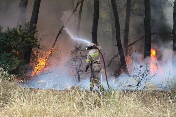 Φωτιά στην Αρκαδία: Νέες αναζωπυρώσεις και εκκενώσεις σε Λιβαδάκι-Καπελλίτσα