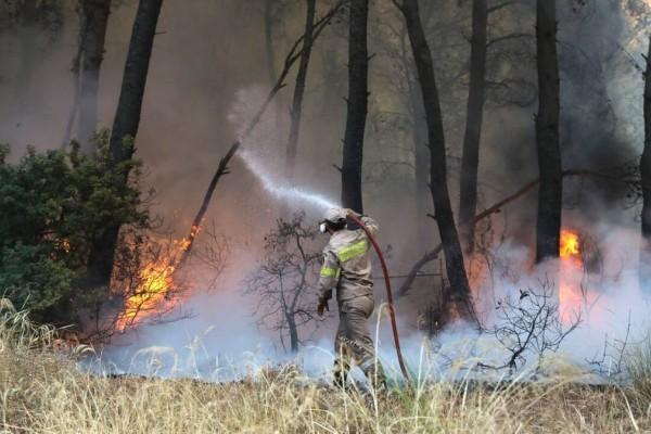 Πυρκαγιές: Πολύ υψηλός ο κίνδυνος πυρκαγιάς σε Αττική και Στερεά Ελλάδα, αύριο Πέμπτη