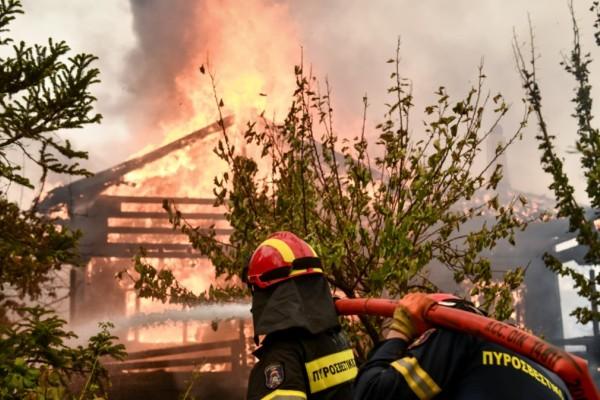 Φωτιά στην Αττική: Δίωξη για εμπρησμό στο Κρυονέρι σε βάρος 43χρονου