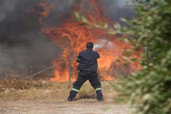 Συναγερμός στην πυροσβεστική: Φωτιά ξέσπασε σε αγροτική περιοχή στην Κρήτη