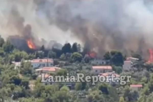 Φωτιά στη Φθιώτιδα: Ετοιμάζονται για εκκένωση στη Μαλεσίνα