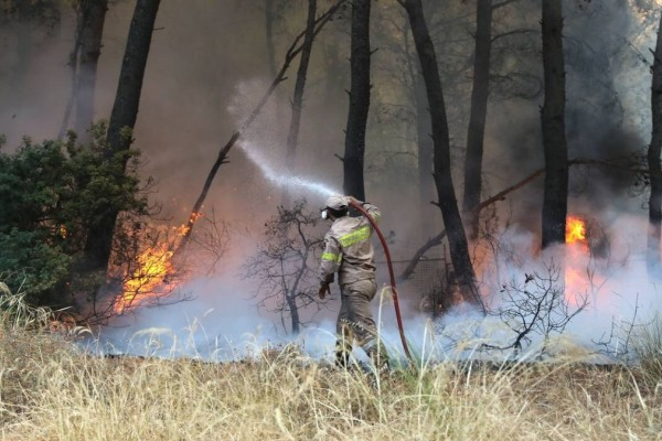 Δήμαρχος Μάνδρας: Οι ενδείξεις ότι η πυρκαγιά είναι εμπρησμός γίνονται αποδείξεις