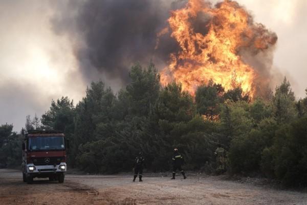 Παναγιώτης Μπεχράκης: Διπλή χειρουργική μάσκα αν μαίνεται στην περιοχή μας μεγάλη φωτιά