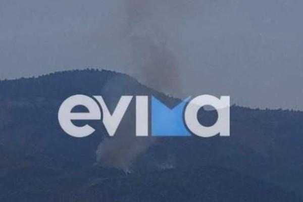 Φωτιά στην Εύβοια: Συναγερμός για νέο μέτωπο στο Μίστρο