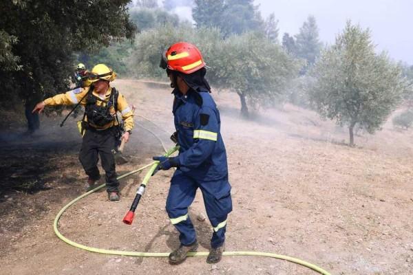 Φωτιά στη Φθιώτιδα - Εκκενώνεται το Λογγίτσι