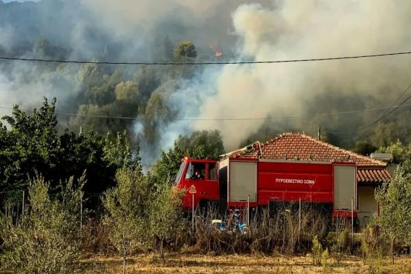 Ηλεία: Πυρκαγιά στις Καυκανιές του Δήμου Αρχαίας Ολυμπίας