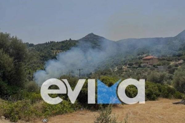Φωτιά στην Εύβοια: Δεν ησυχάζει το νησί - Νέο μέτωπο στην Πλατάνα