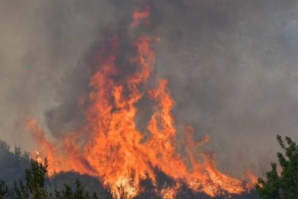 Φωτιά στα Τρίκαλα: Επικίνδυνη αναζωπύρωση στα Στουρνέικα