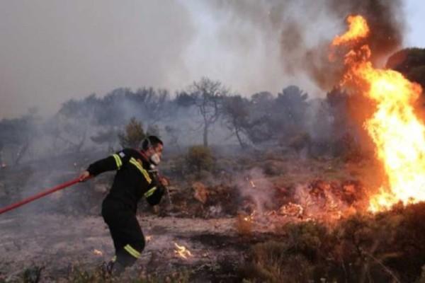 Βοιωτία: Υπό μερικό έλεγχο η φωτιά