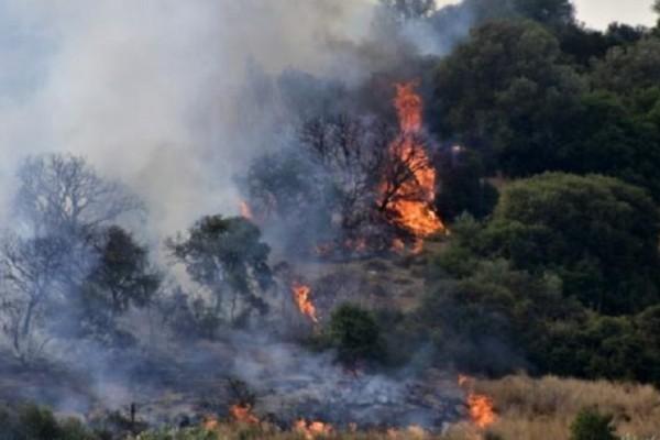 Φωτιά στην Χαλκιδική: Νέα εστία στην Βουρβουρού