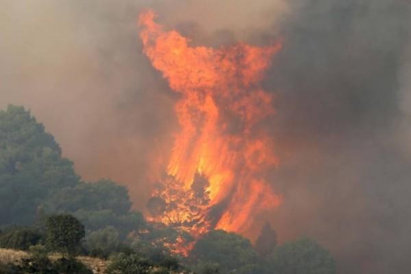 Φωτιά στην Χαλκιδική: Σε εξέλιξη το μέτωπο στην Φούρκα - Οι κεραυνοί έφεραν την πυρκαγιά