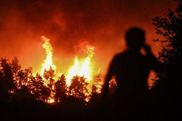 Πυρκαγιές στην Ελλάδα: Κρανίου τόπος Εύβοια και Γορτυνία - Πάνω από μισό εκ. στρέμματα έγινε στάχτη