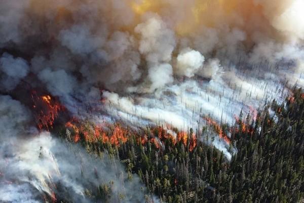 Οι πυρκαγιές του καλοκαιριού σε ένα βίντεο - Κάηκαν 1.200.000 στρέμματα