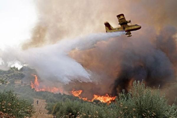Φωτιά στην Αρχαία Ολυμπία: Νέα εντολή εκκένωσης σε Λούβρο, Άνω Λούβρο και Άσπρα Σπίτια