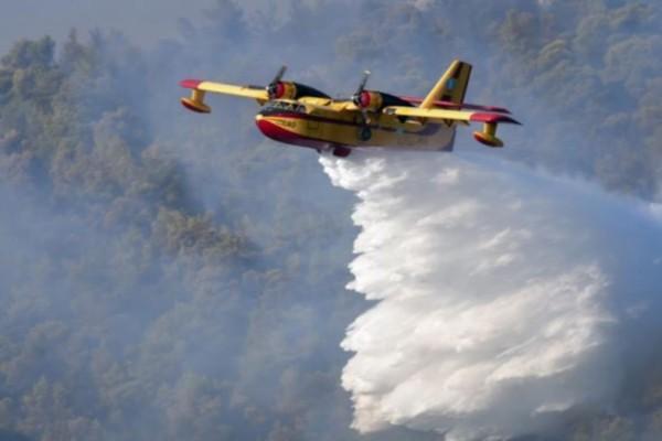 Φωτιά στην Κερατέα: Μάχη με τις αναζωπυρώσεις