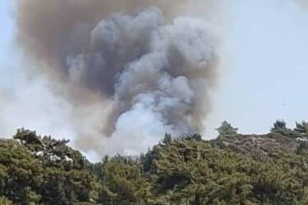 Φωτιά σε Αιτωλοακαρνανία, Έβρο και Ρόδο