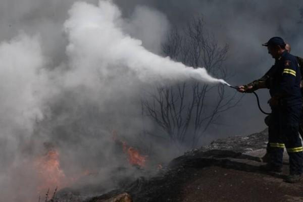 Φωτιά στην Ηλεία: Δεν υπάρχει κανένα ενεργό μέτωπο στην περιοχή