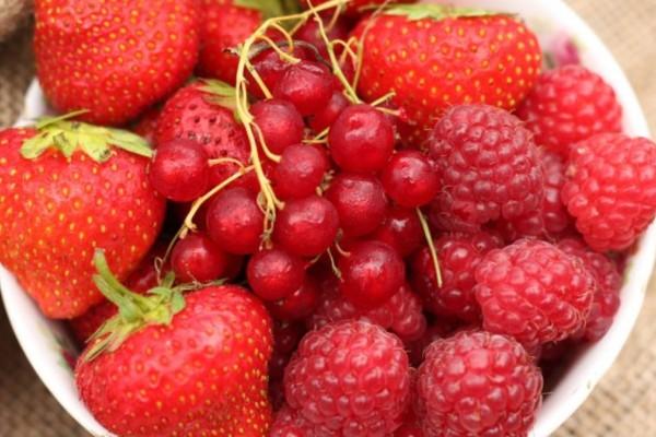 Το κόκκινο φρούτο που ρυθμίζει ουρικό οξύ και τριγλυκερίδια