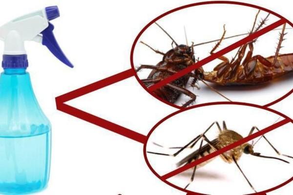 Ψεκάζει με αυτό το μείγμα κα μετά από 2 ώρες... τα κουνούπια, οι μύγες και οι κατσαρίδες εξαφανίζονται