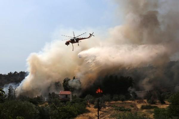 Φωτιά στη Μαγνησία - Συναγερμός στην Πυροσβεστική