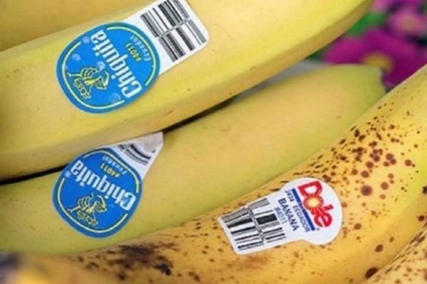 Έχετε προσέξει τα αυτοκόλλητα που υπάρχουν πάνω στις μπανάνες; Δείτε γιατί δεν θέλουν να ξέρουμε τι συμβολίζουν