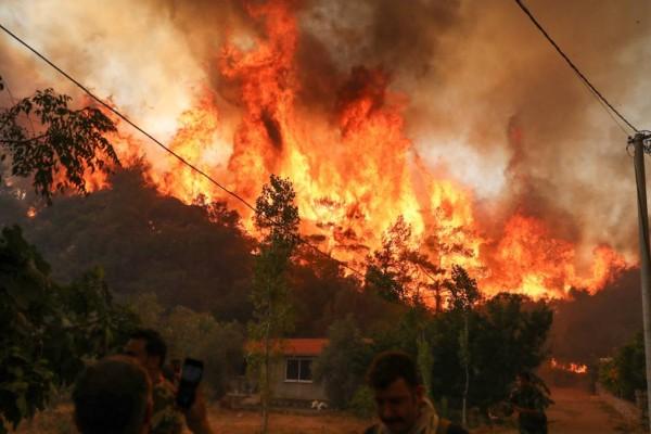 Καταστροφικές πυρκαγιές: Γιατί δεν έστειλε η Γερμανία βοήθεια στην Ελλάδα;