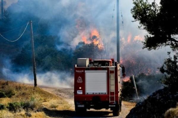 Κρήτη: Συνελήφθη 90χρονος για φωτιά σε χωριό του Ηρακλείου