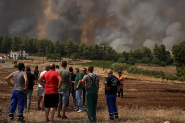Φωτιές: «Πράσινο φως» για την πλατφόρμα αποζημιώσεων στους πυρόπληκτους - Η αίτηση και τα ηλεκτρονικά βήματα