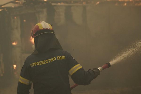 Πυροσβέστες για φωτιές: Όχι άλλα ευχαριστήρια - Εμείς κάνουμε το καθήκον μας, κάνετε κι εσείς το δικό σας