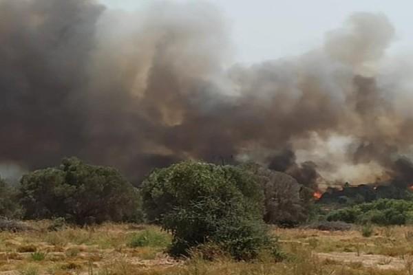 Φωτιά στη Ρόδο - Χωρίς ρεύμα και νερό το νησί