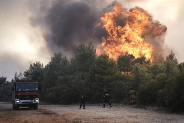 Άσχημη εξέλιξη: Φουντώνει ξανά η πυρκαγιά στη Βαρυμπόμπη - Έντονες αναζωπυρώσεις