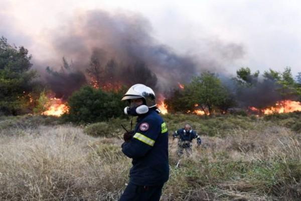 Φωτιά στην Αταλάντη - Επιχειρούν δύο αεροσκάφη