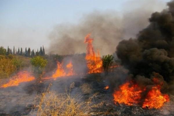 Φωτιά στο Άγιο Όρος - Κινδυνεύουν κελιά
