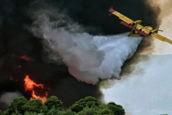 Λέσβος: Μεγάλη φωτιά καίει πευκοδάσος