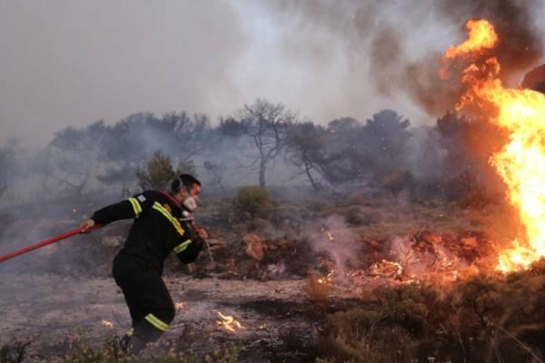 Φωτιά στο Μαραθώνα - Πνέουν ισχυροί άνεμοι