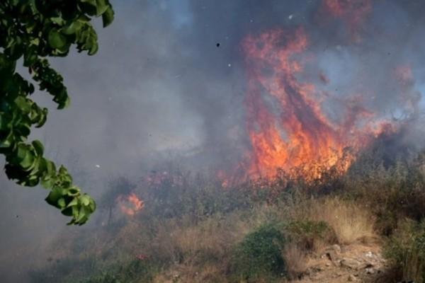Φωτιά στις Σέρρες -  45 πυρκαγιές το τελευταίο 24ωρο