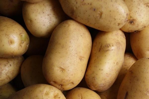 Μεγάλη προσοχή: Αν δείτε αυτό στις πατάτες πρέπει να τις πετάξετε αμέσως!