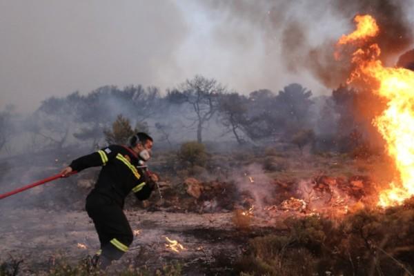 Φωτιά στα Καλάβρυτα - Καίει δασική έκταση