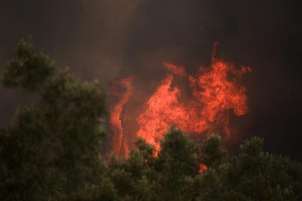 Φωτιά στην Ξάνθη – Πυρκαγιά στην περιοχή του Δασοχωρίου