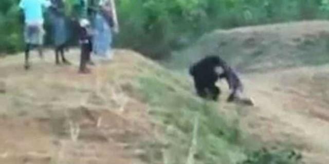 Αυτός ο άνδρας πλησιάζει μια αρκούδα για να βγάλει μια selfie - H συνέχεια θα κάνει το αίμα σας να