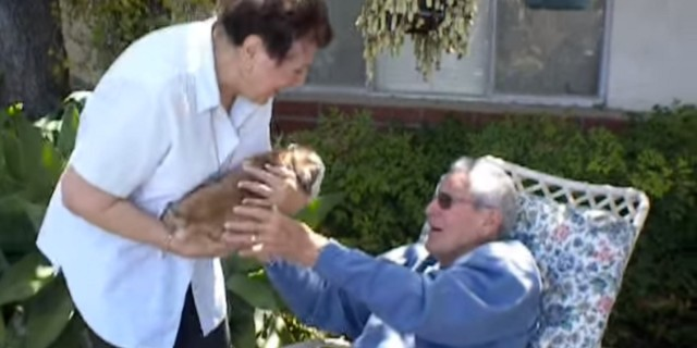 Η γιαγιά ενέδωσε σε αυτό που ζητούσε ο παππούς εδώ και καιρό - Ούτε που το φαντάζεστε