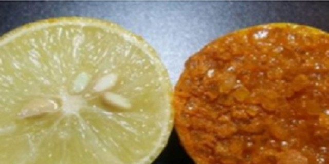 Θεραπεία 10λπετη με λεμόνι και σκόνη κουρκουμά - Δεν θα ξαναπάτε σε ινστιτούτο ομορφιάς