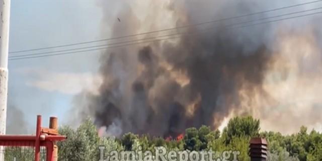 Μεγάλη φωτιά στον Θεολόγο (Video)