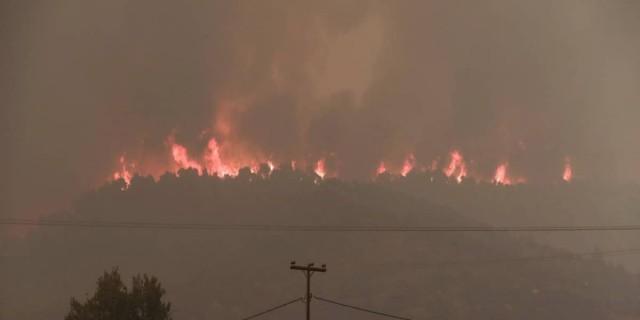 Φωτιά στην Χαλκιδική