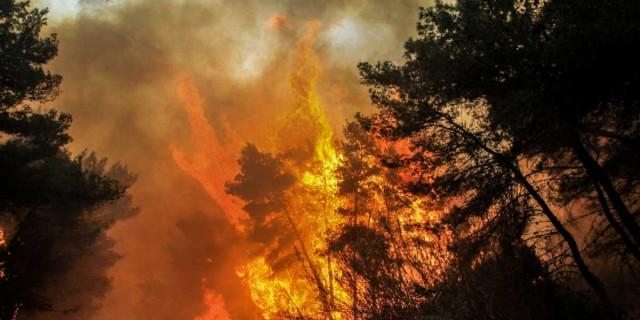 Φωτιά στο Πέραμα