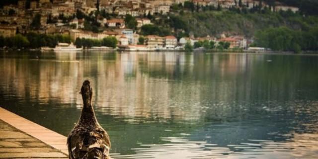 Η φωτογραφία της ημέρας: Μαγευτική Καστοριά