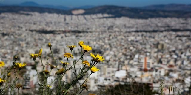 Καιρός σήμερα: Λιακάδα και άνοδος της θερμοκρασίας σε ολόκληρη τη χώρα