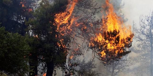 Πύρινη λαίλαδα σε Αργολίδα και Εύβοια - Συναγερμός στην Πυροσβεστική!