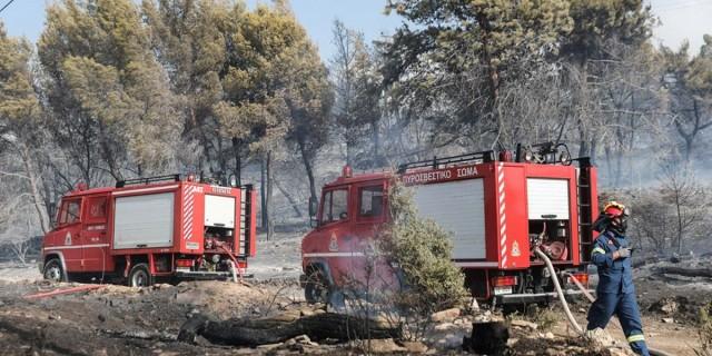 Στις φλόγες και η Καστανιά Μάνης: Εκκενώθηκαν οι οικισμοί Καστάνια, Άγιος Νικόλαος και Κόκκινα Λουριά!
