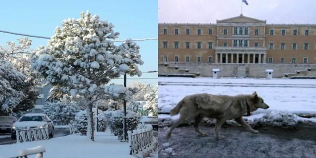 Τα Μερομήνια μίλησαν: «Βαρύς χειμώνας, ο πιο επικίνδυνος» - Πότε θα χιονίσει στην Αθήνα;